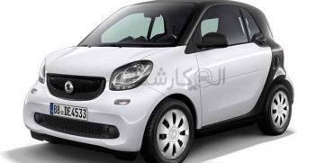 به زبان انگلیسی Micro Car شناخته می شود. این دسته از خودرو ها بسیار کوچک و اصطلاحا فسقلی هستند که تحت عنوان خودرو های سگمنت میکرو یا همان میکرو کار شناخته می شوند. این دسته که به ماشین های مینیاتوری نیز مشهور هستند، به نوعی منسوخ شده و تقریبا دیگر در بازار وجود ندارند. امروزه خودرو هایی که جزو دسته مینیاتوری یا میکرو معرفی می شوند در واقع متعلق به گروه دیگری هستند