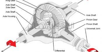 دیفرانسیل جلو دیفرانسیل مرکزی دیفرانسیل عقب یا کله گاوی چیست؟ کارشناسی خودرو الوکارشناس