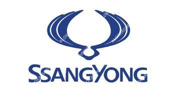 الوکارشناس شرکت کارشناس خودرو سانگ یانگ چیرمن ، کارشناس سانگ یانگ چیرمن ، کارشناسی سانگ یانگ چیرمن در محل ، تشخيص رنگ سانگ یانگ چیرمن