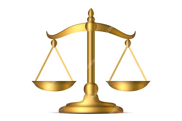 قوانین و مقررات الوکارشناس ، تعهد الوکارشناس